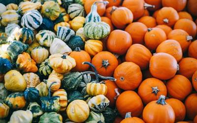Halloween di zucca