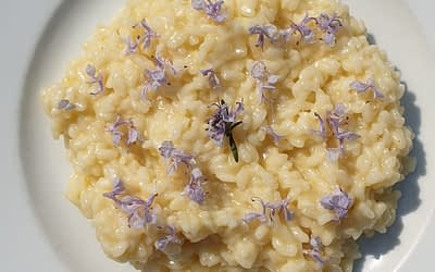 Risotto ai fiori di rosmarino